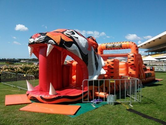 The Tigers Obstacle Course